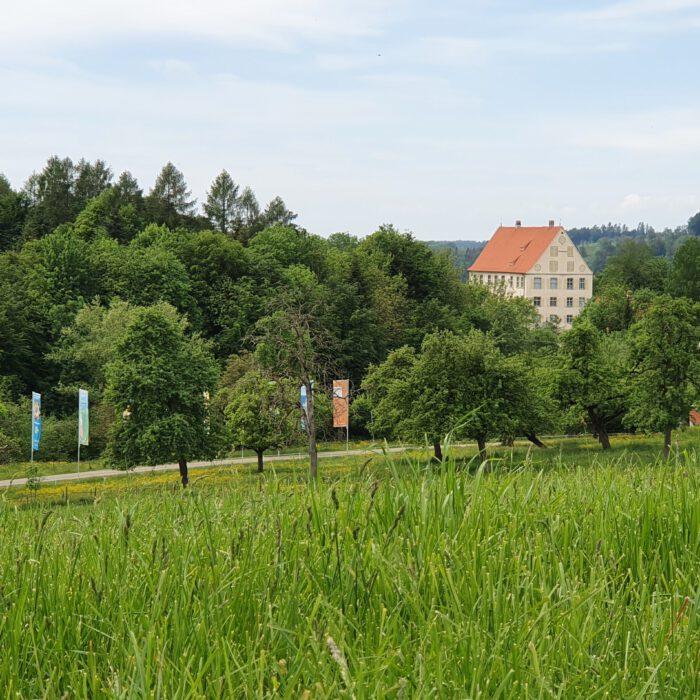 Schloss Achberg im Grünen